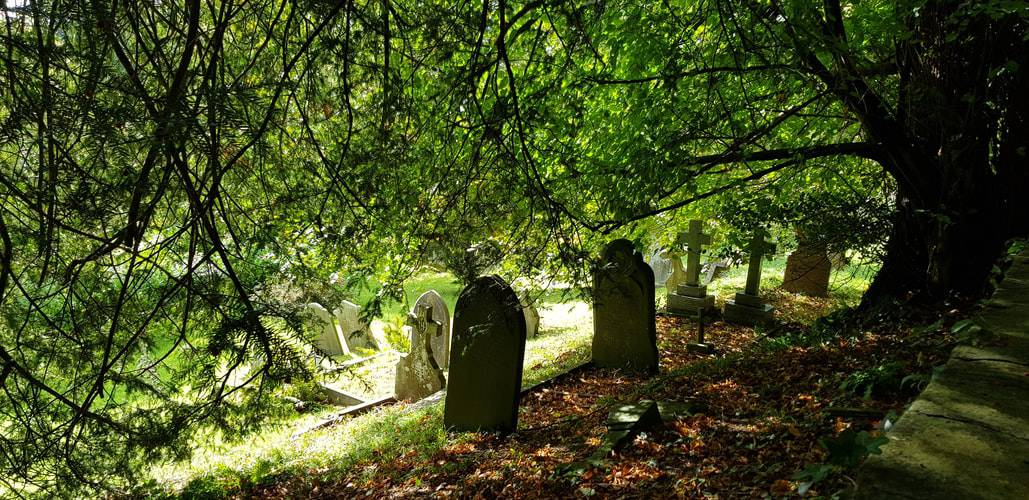 Pet Graveyard: An Honorable Goodbye To Pets